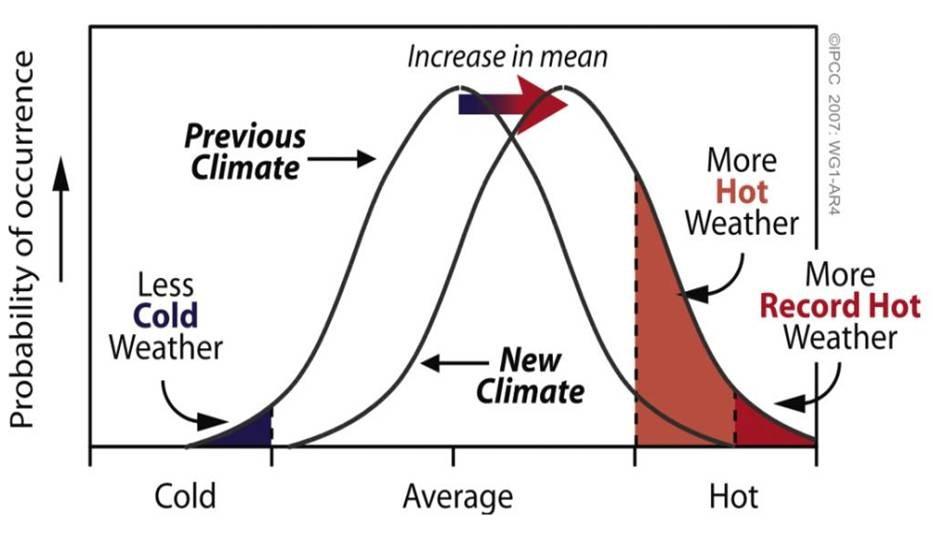 Wykres przypominający przesunięcie rozkładu normalnego