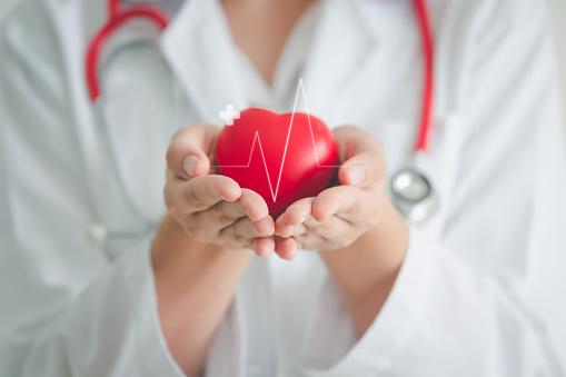 Serce zaprezentowane na dłoniach lekarza