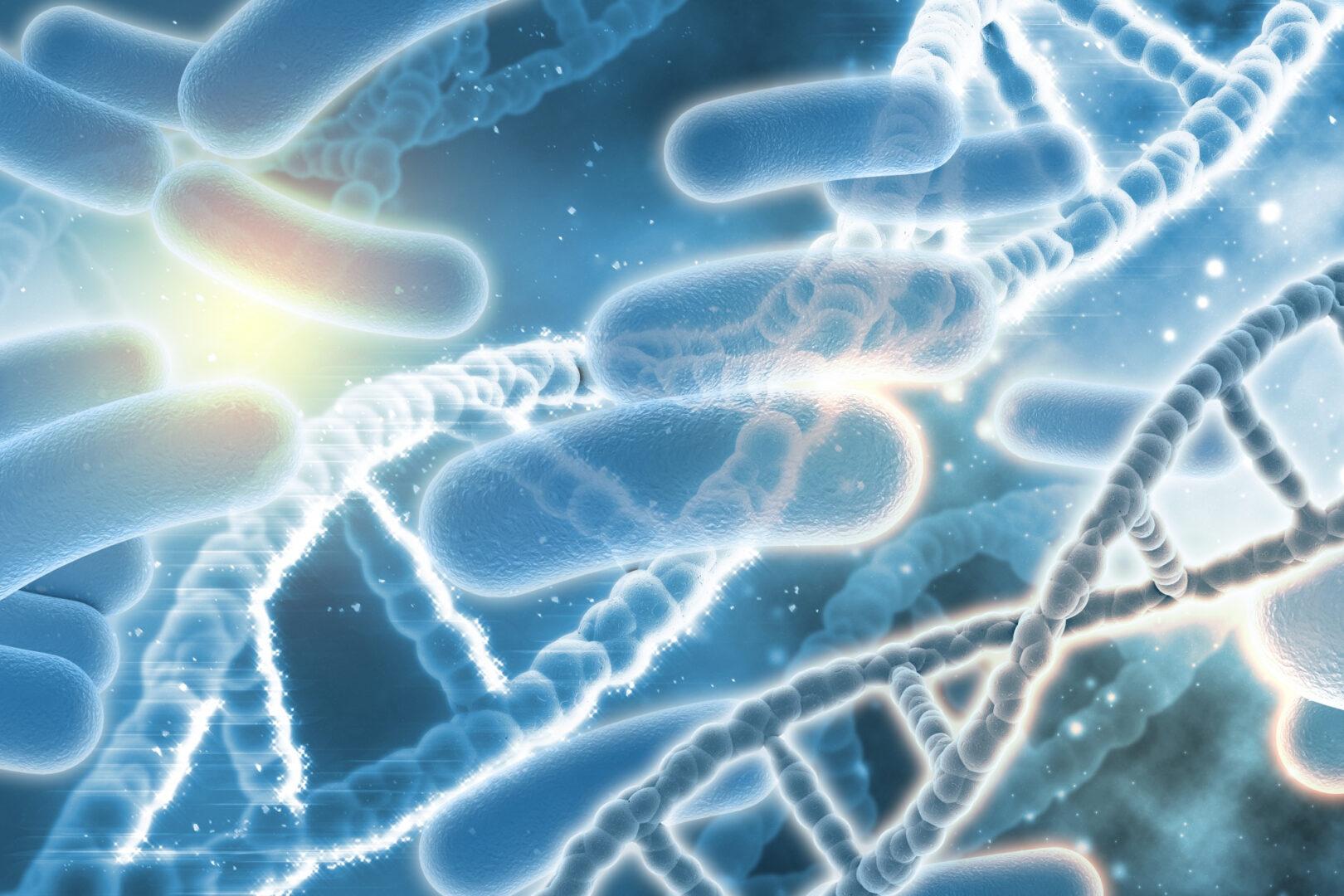 Synteza białka na przykładzie zdjęcia dna i bakterii